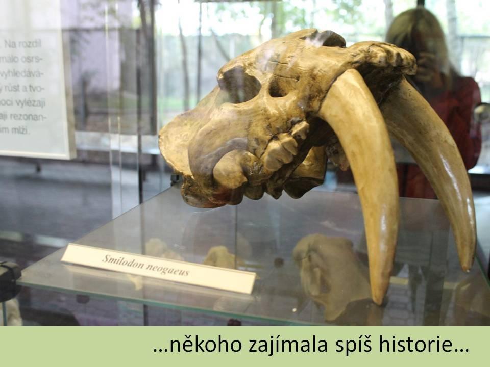 zoo25
