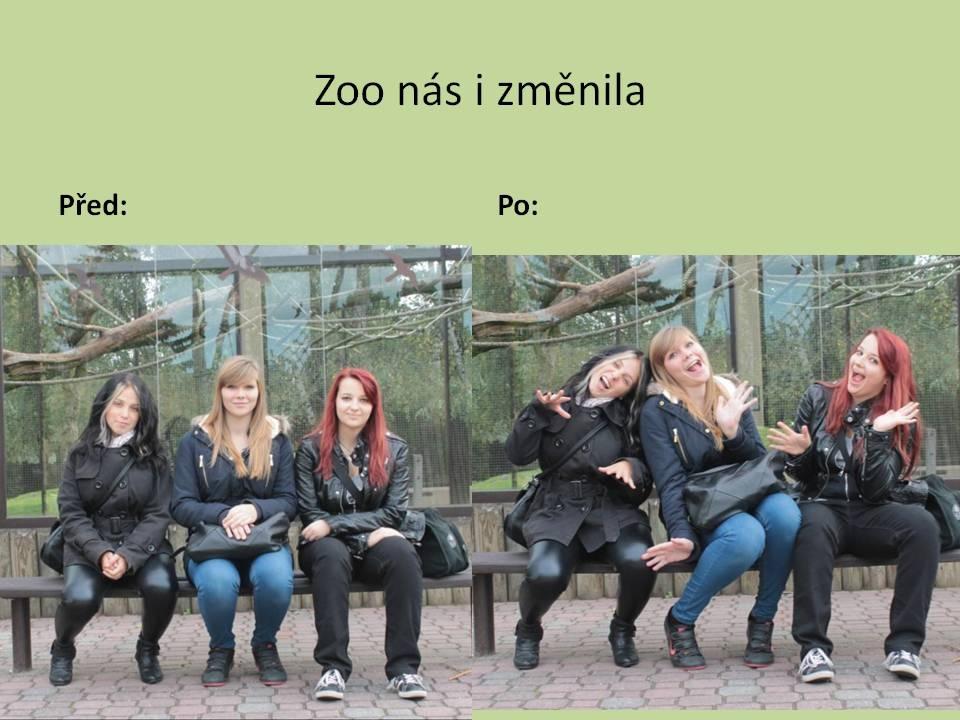 zoo33