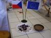 Antokyany jako rostlinné indikátory zkoumali žáci ze ZŠ Studánka