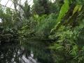 botanicka_zahrada_12