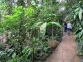 botanicka_zahrada_14