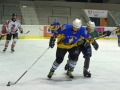 hokej_FL_15