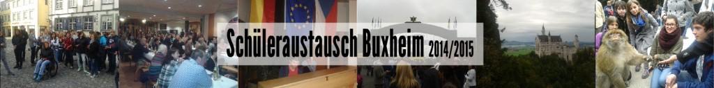 buxheim_2014_bayer
